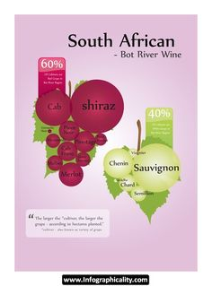 South African Wine Infographic | Infographicality
