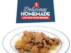 5 Homemade Wet Dog Food Recipes Kidney Recipes, Dog Food Recipes, Diet Recipes, Onion Recipes, Puppy Food Homemade, Fruit Dogs Can Eat, Top 10 Dog Foods, Best Dog Food Brands, Wet Dog Food