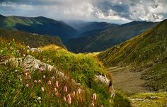 Image discovered by Anni. Find images and videos about romania, rumania and beautiful landscapes on We Heart It - the app to get lost in what you love. Carpathian Mountains, Beautiful Landscapes, Rooftop, Find Image, Travel Destinations, Places, Photography, Deviantart, Link