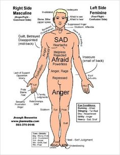 Where you store your emotions in your Physical Body - Google Search