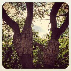 Birdhouses, Islington #london