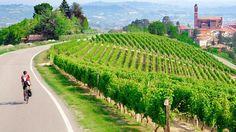 Piedmont, Italy, vineyards, wine, cycling, biking,