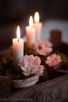 Candles♥and roses how much more romantic can you get?
