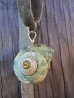The colors in this shell necklace are AMAZING!    Seafoam green Mermaid Shell Ariel II Pendant Necklace by Tlala