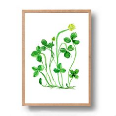 Clover plant art print St Patric's day lucky by TheJoyofColor