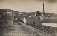 CANARIAS  FOTOS   Canary Islands Photos: RON AREHUCAS.......FABRICA.........ARUCAS