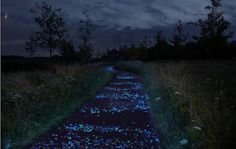 Artist To Recreate Starry Night On Former Van Gogh Stomping Ground | The Creators Project