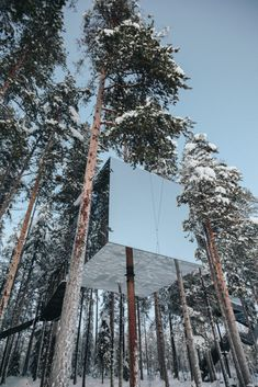 Visit the Tree Hotel in Northern Sweden