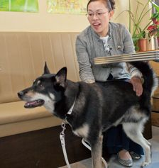 VOL.31 柴田理恵さん | ONE LOVE Husky, First Love, Dogs, Animals, Animales, First Crush, Animaux, Pet Dogs, Puppy Love