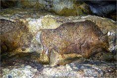 Prehistoric painting in the Font de Gaume Cave - photo by CMN Paris; The Font de Gaume cave is in the Dordogne region of France. La Roque Gageac, Paleolithic Art, Art Rupestre, Lascaux, Dordogne, Ancient Mysteries, Stone Age, Indigenous Art, Ancient Art