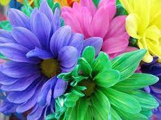 neon flowers - Google Search