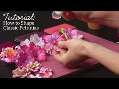 EZ Classic Petunia Flowershaping Techniques featuring the Classic Petunia Collection - YouTube