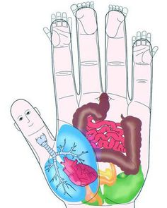"""Acupressure ~ Other pinner says: """"I have severe neck pain and tension all the time and I just pinched the corresponding part of my hand and it felt better immediately! I will not forget this!"""""""