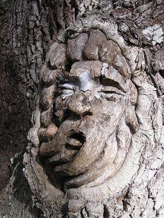 Tree Spirit, St. Simons Island, GA