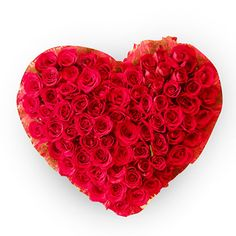Get Online Flower Delivery in Delhi from Giftalove. Send Flowers to Delhi with same day and midnight delivery. Florist in Delhi offers fresh flower delivery in 3 hrs. Best Valentine Gift, Valentine Gifts For Girlfriend, Buy Cake Online, Online Gifts, Karwa Chauth Gift, 100 Red Roses, Flowers For Valentines Day, Buy Flowers Online, Online Flower Delivery