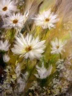 Felted daisies picture