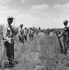 After the armistice agreement, North and South Korean soldiers stand guard at the 38th parallel, Korea. June 1959.