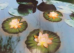 3 pc Garden Pond Lily Lights Lighting Floating Flower Pool Decoration Ornament  #HarewoodInternational