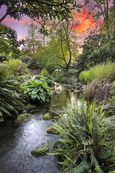 Crystal Springs Rhododendron Garden .