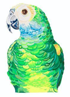 Chloe Croft - Parrot Portrait