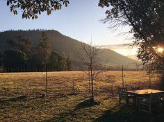 Oregon winetasting views are . #savewaterdrinkwine