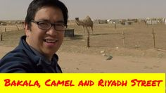 The video shows my visit to Bakala, and Showing Camels that can be found in Riyadh. I also show video taken by my go pro in the Riyadh Street. Show Video, Riyadh, Camels, Saudi Arabia, Live, Street, Videos, Youtube, Walkway