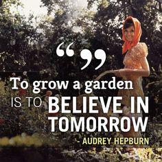 """To grow a garden is to believe in tomorrow"" - Audrey Hepburn #quote #gardening #inspiration    www.HomeFarmer.com"