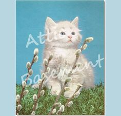 Vintage Frameable Print White Kitten and Pussy by AtticBasement, $5.75