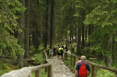 The hike to Morskie Oko in Zakopane, Poland  A welcomed day trip from Krakow and a beautiful set of views!