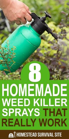 21 best weed killer natural images lawn garden gardening rh pinterest com