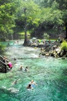 Come across this looking for things in Florida and The Grotto is on here! Can't believe I like less than 2 hours from a place that made this list. North America's 7 Best (and Secret) Swimming Holes Lafayette Blue Springs State Park - Florida, USA Vacation Places, Dream Vacations, Vacation Spots, Places To Travel, Florida Vacation, Florida Travel, Visit Florida, Vacation Travel, Family Vacations