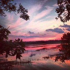 Sunset on Skidaway Island, GA… Visit Savannah, Savannah Chat, Savannah Georgia, Camping Spots, Go Camping, Places To Travel, Places To Visit, Camping World Locations, Georgia State Parks