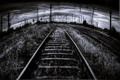 Railroad . / the train to nowhere.  #photo #photography #structural #black_and_white #railroad_tracks