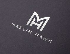 The Allotment creates an identity for recruitment consultancy Marlin Hawk