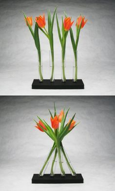 ohhh, this is different!...magnetic test tube vase
