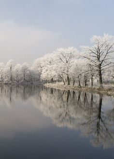 winter river, kalisz, poland
