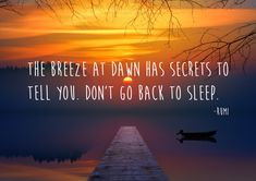 Sufi Poetry, To Tell, Dawn, Told You So, Sleep, Movies, Movie Posters, Films, Film Poster