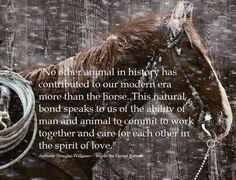 #horse #friend