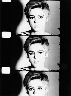 Thee Original Superstar  Edie Sedgwick