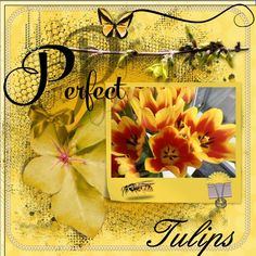 Hi Eileen , here is my May 2016 Tulips mask page thanks for again a loving mask , perfect color for my tulips I got free from the local shop because it is the first time they bin back open again on Sunday too I also used your loving new kit - HSA New Life , thanks for both ,  I could combi it great together. pict. my own font - Script by Tulips , the other ( Perfect ) is in the kit shadowed a bit