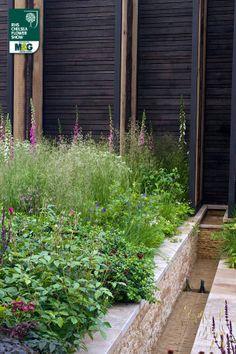 RHS Chelsea Flower Show - Show Garden - Cloudy Bay Sensory Garden Cloudy Bay Wilson McWilliam Studio