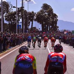 source instagram tdwsport  Classics are over but today's race conditions where the same @giroditalia #stage3 #echelons #wind #peloton #chaos #cycling #giro100 #girorosa  tdwsport  2017/05/08 06:15:11