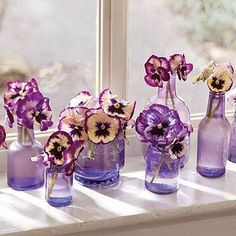 Pretty purple pansies In pristine purple glass, Peer through the frosted pane As hours of winter pass! Laughing at the winds That chill the ground below, Pretty purple pansies, Feel no fear I know! (Penned by SummerGypsy Purple Home, Deco Floral, Arte Floral, Winter Flowers, Beautiful Flowers, Purple Flowers, Purple Petunias, Flower Colors, Beautiful Bouquets