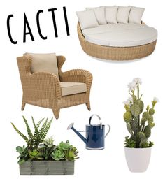 """""""Untitled #41"""" by maria93-bb ❤ liked on Polyvore featuring interior, interiors, interior design, home, home decor, interior decorating, Sunset West, succulents and cacti"""