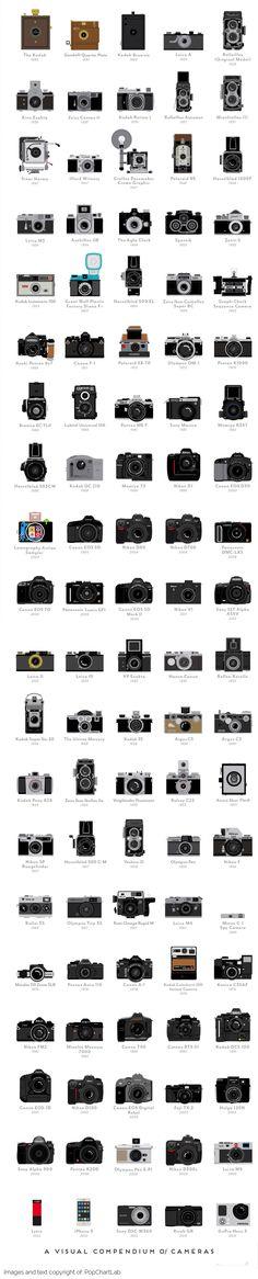 Infographic: A Visual Compendium of Cameras | photography, camera,  history, evolution