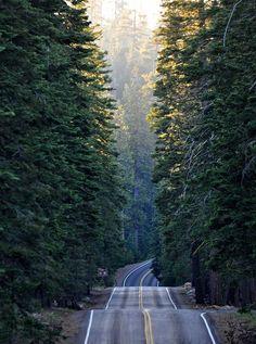 I wanna drive this road.