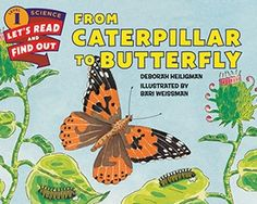 This beginning science scholastic book, by Deborah Heiligman and illustrated by Bari Weissman, shows the steps that a caterpillar goes through to become a bu. Painted Lady Caterpillar, Caterpillar Book, Core Learning, Web Research, Butterfly Books, Trade Books, Read Aloud Books, Next Generation Science Standards, National Book Award