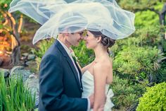 simply stunning. #karlstrauss #veil. Photo courtesy of Fonyat Photographer.