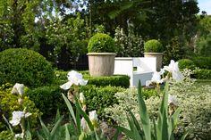 Andrew Stark Hampton Garden, Chelsea Flower Show, France Travel, The Hamptons, Garden Design, Flora, Earth, Landscape, Garden Ideas