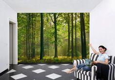 Fototapete Herbstwald - die Tapete mit ruhiger Waldstimmung   wall-art.de Online Shop